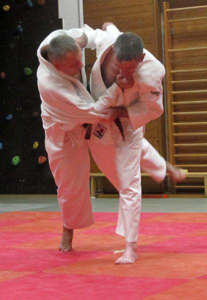 Kataprüfung Judo TV Hochdorf